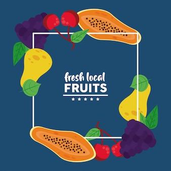 Свежие местные фрукты с папайей Premium векторы