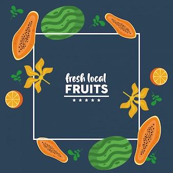 Свежие местные фрукты с арбузами и папайей