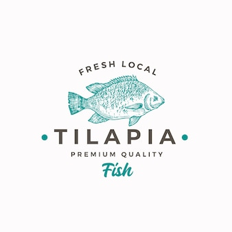 Fresh local tilapia