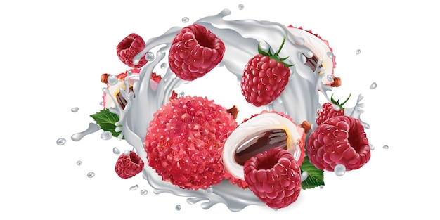 Fresh lychee and raspberries and a yogurt or milk splash on a white background. realistic illustration.