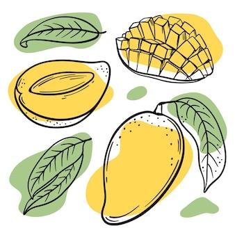 白い背景に黄色と緑の色のスプラッシュと葉のスケッチと新鮮なマンゴー