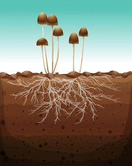 Fresh mushroom growing on land