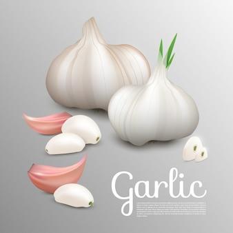 Fresco naturale concetto di aglio