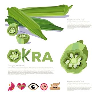 신선한 오크라 또는 녹색로 젤컷 조각 그래픽 정보