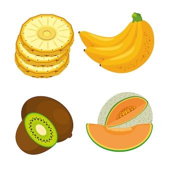 신선한 유기농 과일 개념