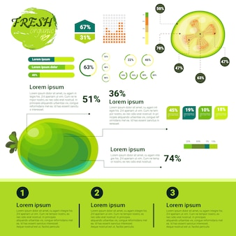 신선한 유기농 인포 그래픽 천연 과일 성장, 농업 및 농업