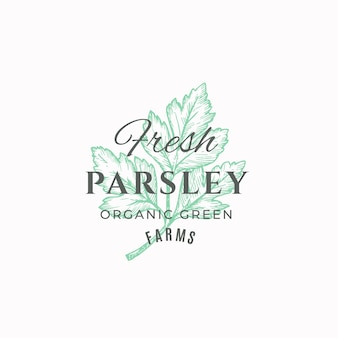Fresh parsley abstract  sign, symbol or logo template.