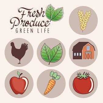 Иконки свежих продуктов