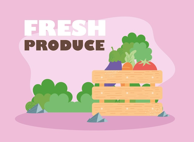 Fresh produce lettering