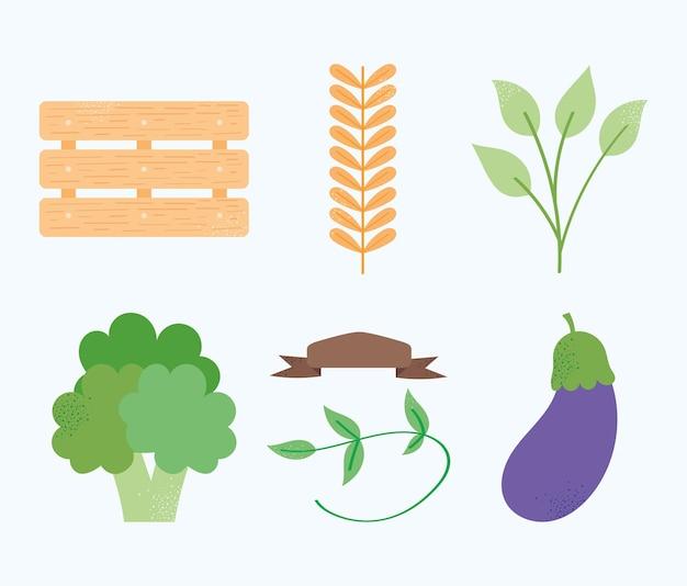 生鮮食品セット