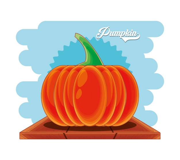Fresh pumpkin healthy food vector illustration design