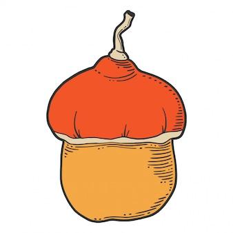 Fresh raw pumpkin.