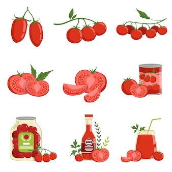 Fresh red healthy tomatoes and tomato products set of vector illustrations