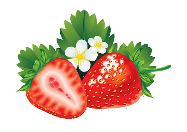 Fresh red strawberry with leaves isolated on white