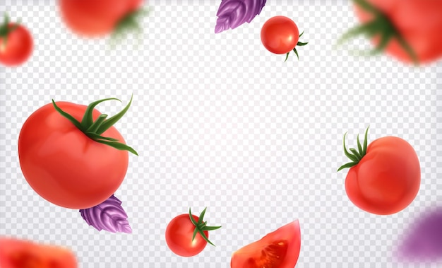 Fresh red whole and slice tomatoes with green twig and violet basil leaves on transparent