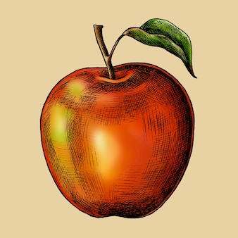Fresh ripe red apple vector
