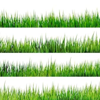 白い背景に分離された新鮮な春の緑の草。