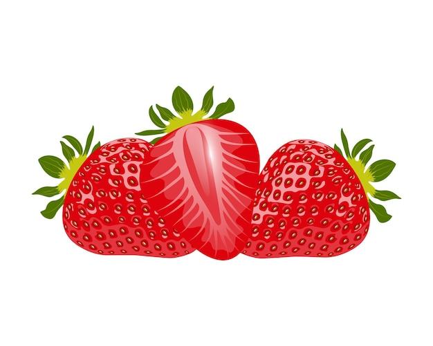 Свежая клубника. сладкая еда. клубника крупным планом на белом фоне. векторная иллюстрация.