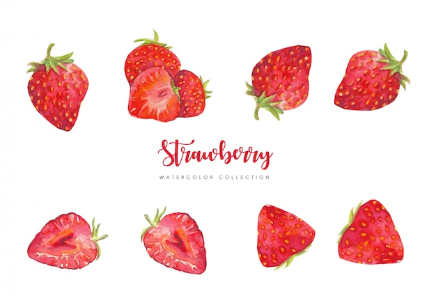 Fresh strawberry collection