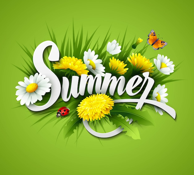 Fresh summer background with grass, dandelions and daisies
