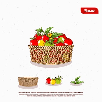 Fresh tomato in the bucket illustration design