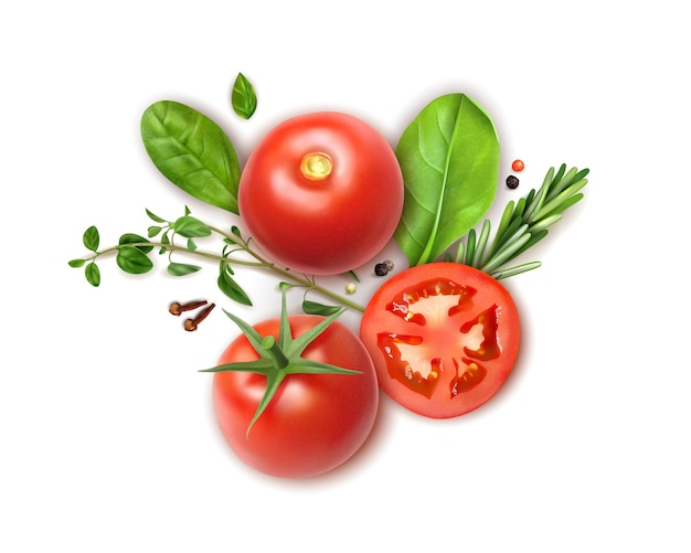 Fresh tomatoes whole and slices realistic composition with basil oregano rosemary herbs aromatic clove spice