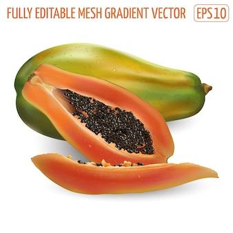 Папайя свежих тропических фруктов на белом фоне. реалистичная иллюстрация.