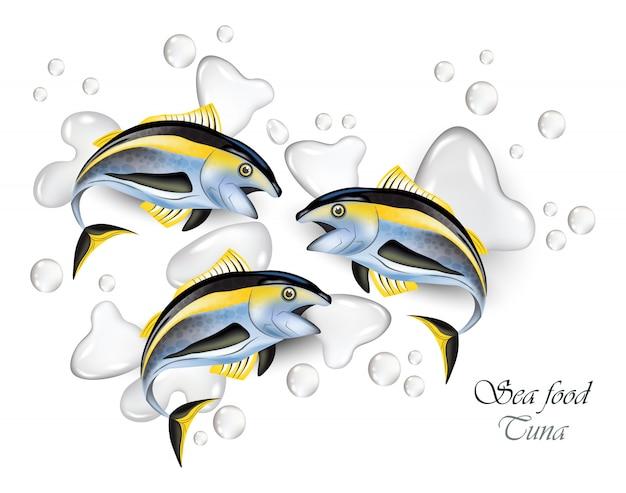Fresh tuna fish and water splash