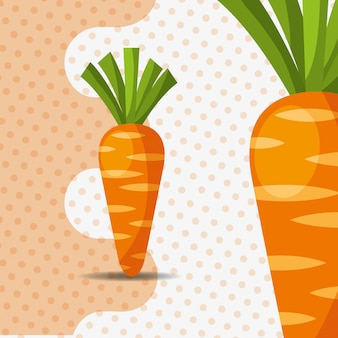 Fresh vegetable carrots on dots background