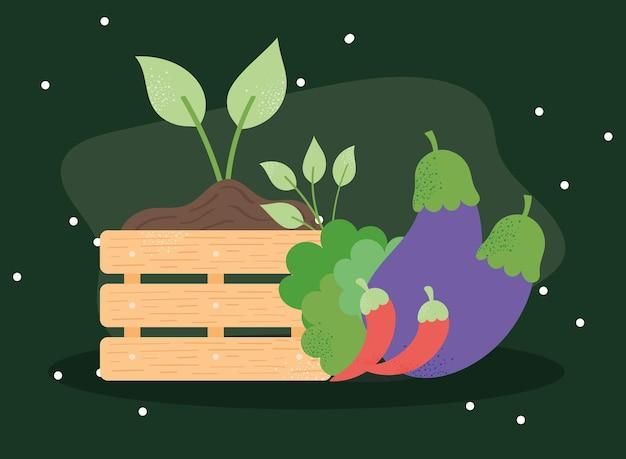Fresh vegetables and basket