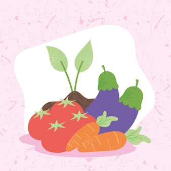 Fresh vegetables produce