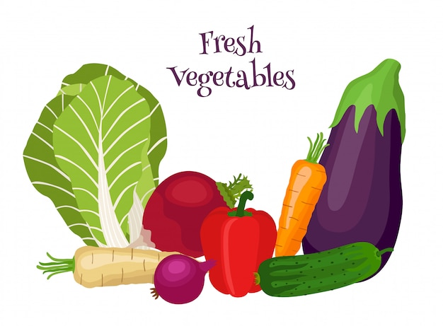 Fresh vegetables with bok choy, eggplant, carrot, cucumber, onion, bell pepper.