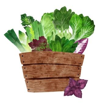 Свежие овощи в деревянной коробке рисованной вектор Premium векторы