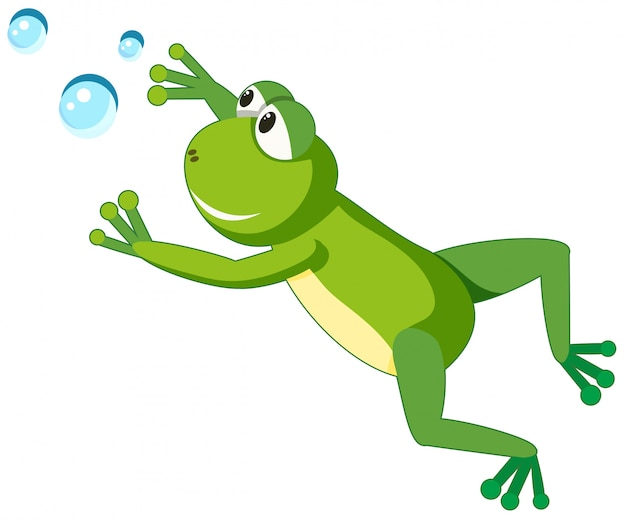 A frog character on white background