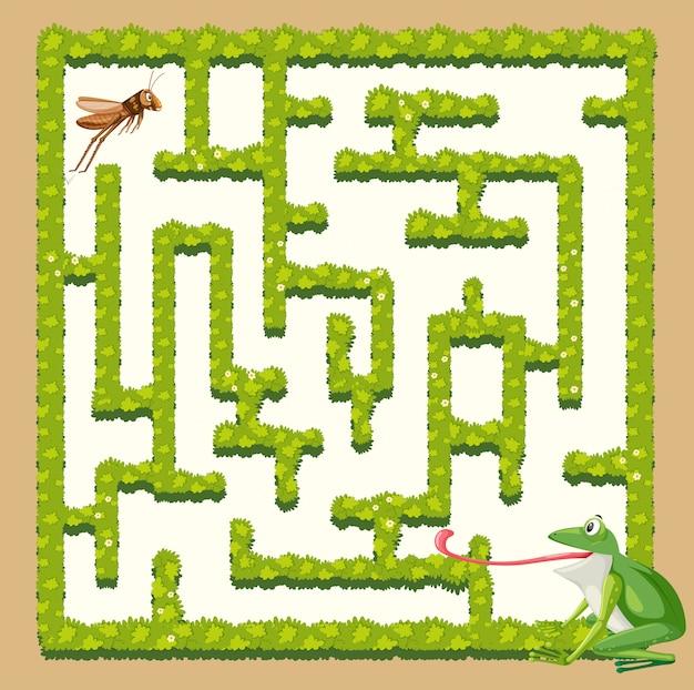 A frog finding grasshopper