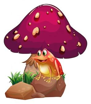 A frog below the giant mushroom