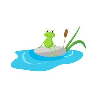 A frog sits on a rock near the water