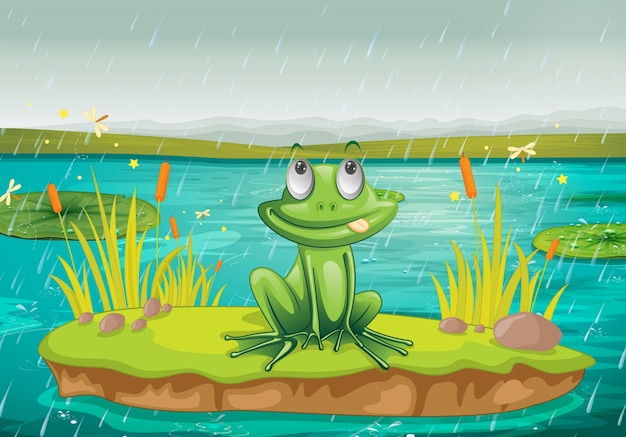 Frog on water