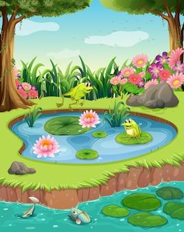 Лягушки и рыба в пруду