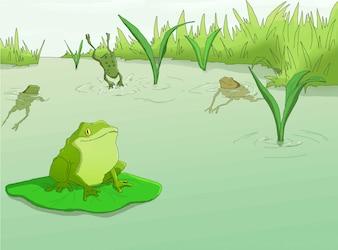 Лягушки в реке