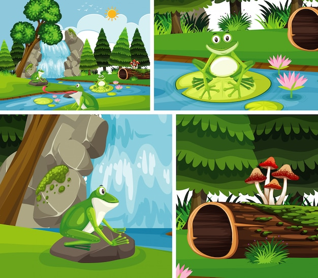 Frogs in nature background set