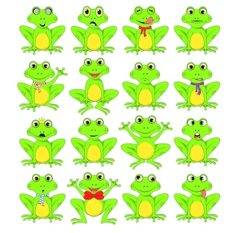 개구리 흰색 배경 설정
