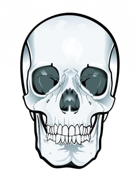 skull clipart vectors photos and psd files free download rh freepik com free skull clipart free deer skull clipart