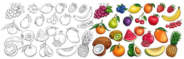 Fruit and berries drawn icons set.