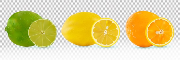 Фрукты цитрусовые апельсин, лимон, лайм.