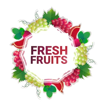 Fruit colorful circle copy space organic over white pattern background, healthy lifestyle or diet concept
