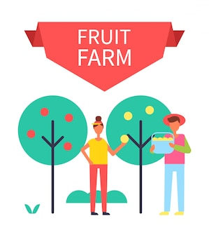 Fruit farm harvesting illustration
