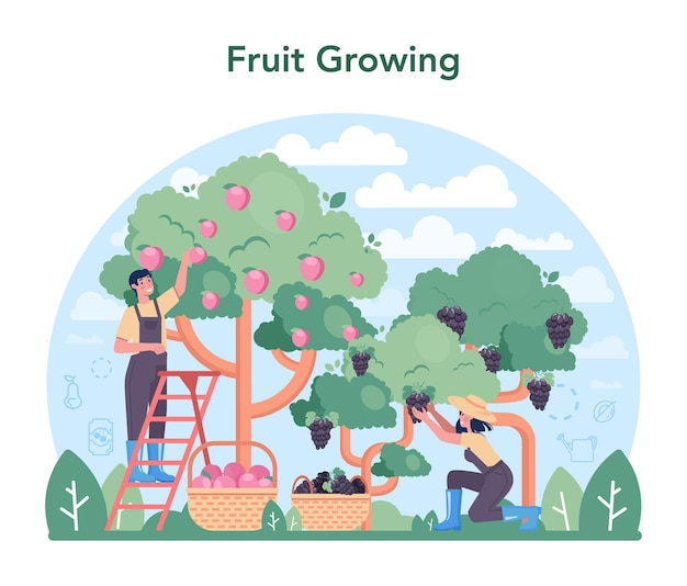 Fruit farming and processing industry. idea of agriculture and cultivation. organic harvest selection. dried fruits, juice and canned fruits production. isolated flat vector illustration