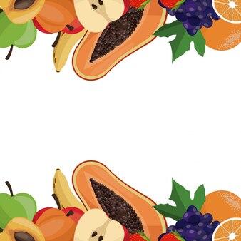 フルーツ健康なボーダーカード