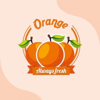 Fruit orange always fresh emblem
